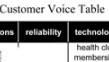 click to view Diversity Customer Voice Table